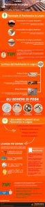 infografica Pavimento in legno